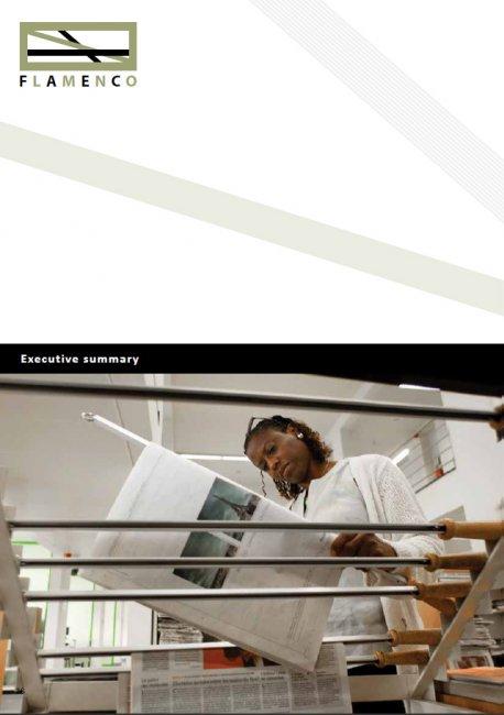 VLUHR: Digitaal drukwerk: jaarverslag van Flamenco vzw